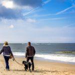 Gesundheits-Kolumne: So gesund und fit macht das Meer